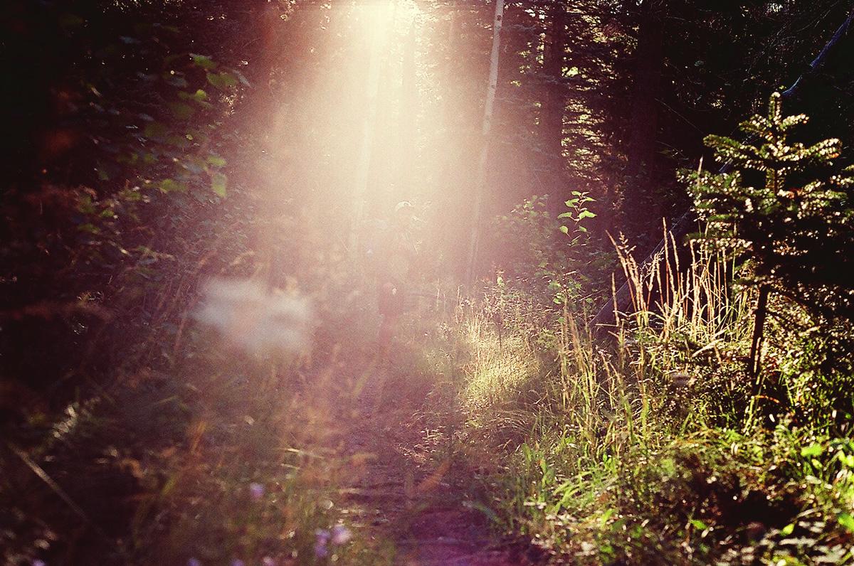 11_tylerbeckwith_wentforahike_late-summer