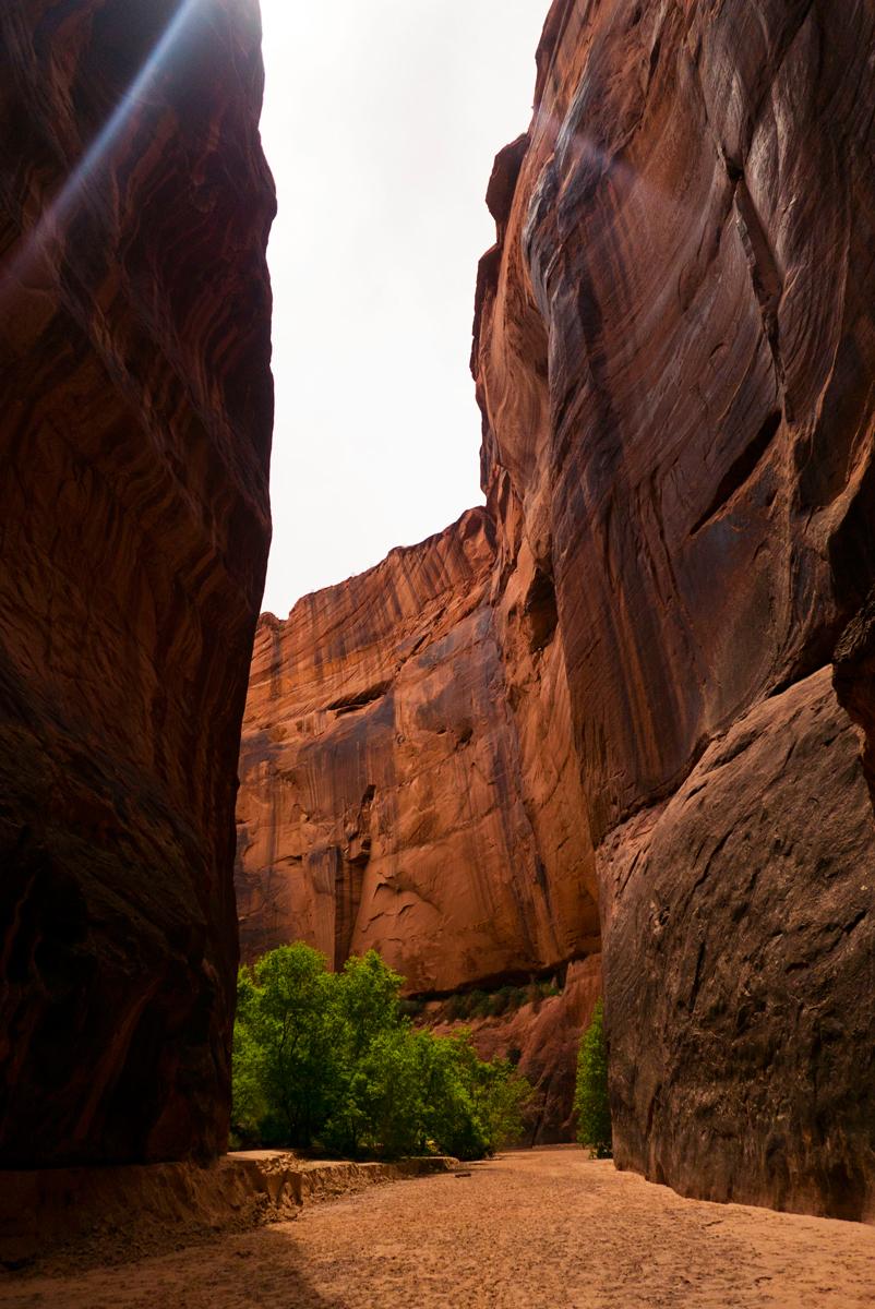 27_tyler-beckwith_wentforahike_paria-canyon